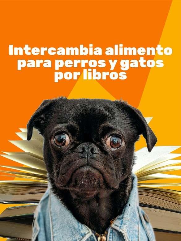 Participa del trueque 'Por una barriguita llena' para perros y gatos de las comunas 1 y 2