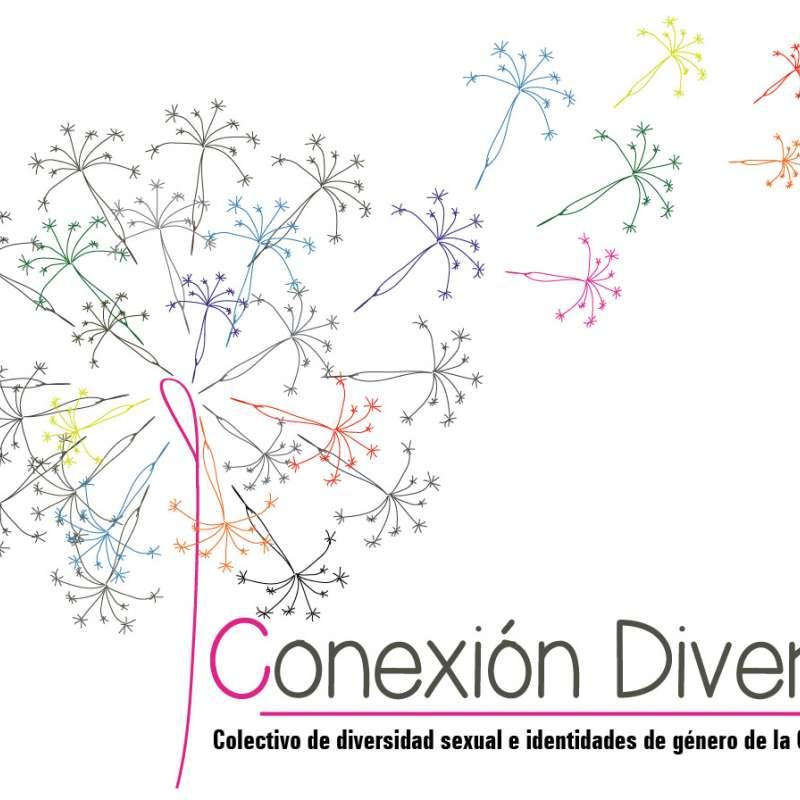 Conexión diversa
